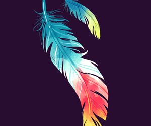 feather, art, and colorful image