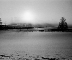 black and white, cold, and nature image