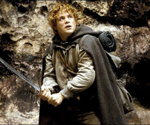 lord of the rings and Sam image
