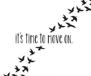 bird, quotes, and move on image