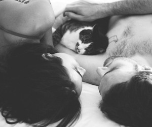 cat, couple, and sex image