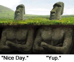 funny and stone image