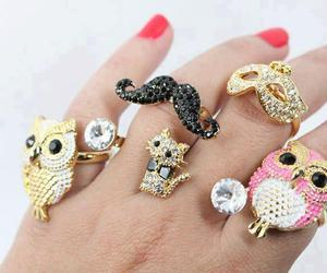 owl, rings, and cat image
