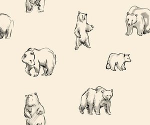 bear, pattern, and textile image