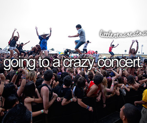 concert, music, and crazy image