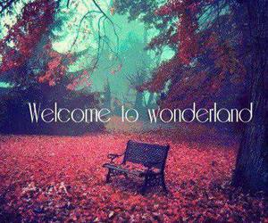 wonderland and welcome image