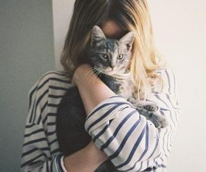 aw, cat, and girl image