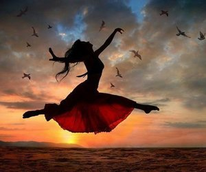 dance, bird, and fly image