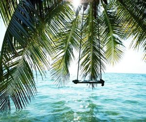 beach, beauty, and swing image