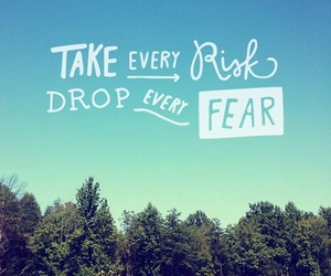 quote, risk, and fear image