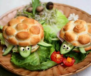 food, turtle, and salad image