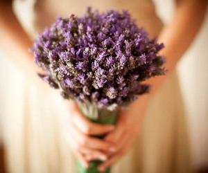 bouquet and lilac image