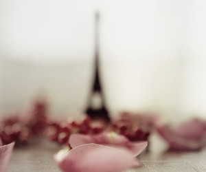 paris, eiffel tower, and rose image