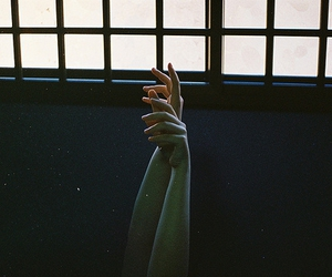hands, photography, and tumblr image