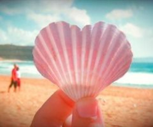 beach, heart, and sea image