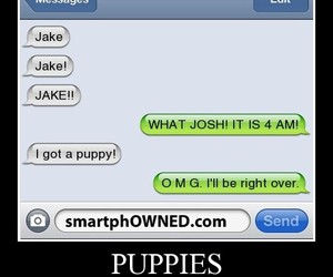 funny, puppy, and text image