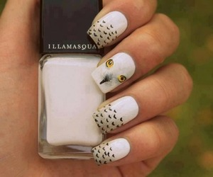 nails, owl, and white image