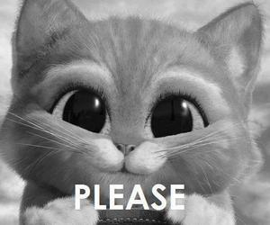 adorable, pleasee, and blackandwhite image