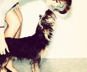 barbara palvin, model, and dog image