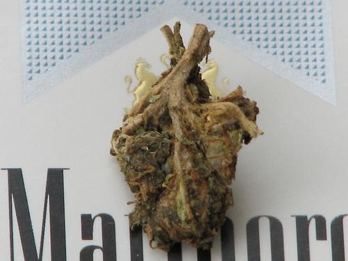 cigarette, heart, and marlboro image