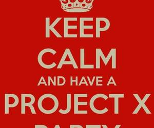 party, project x, and keep calm image
