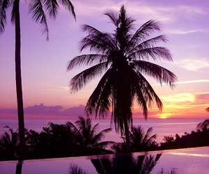 beautiful, beach, and summer image