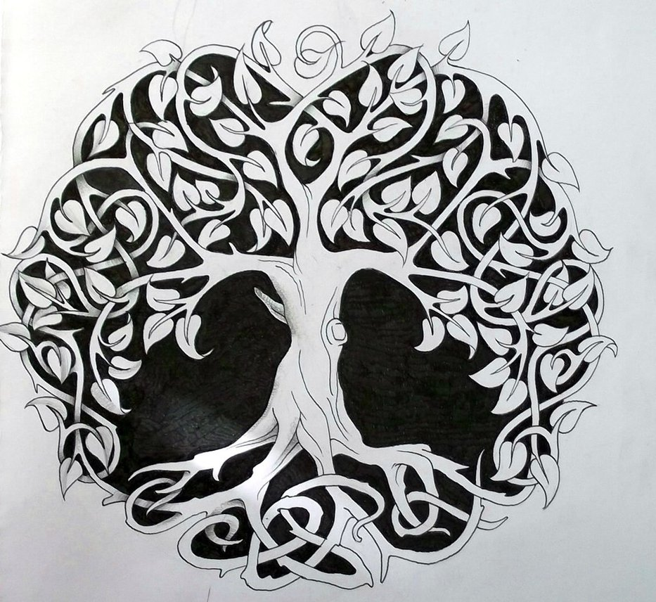 Celtic Tree Of Life Shared By Baby Elephant On We Heart It