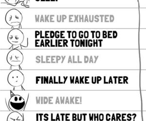 sleep, funny, and schedule image