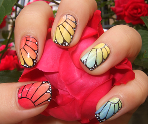 butterfly, colour, and nail image