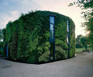 house and green image