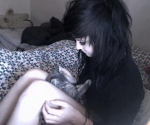 hair, kitten, and smile image