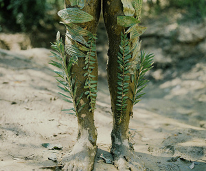 nature, feet, and legs image