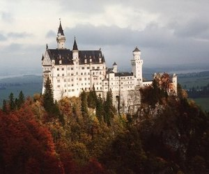castle, nature, and trees image