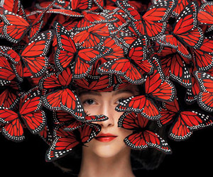 butterfly, Alexander McQueen, and hat image