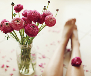 feet, nature, and flower image