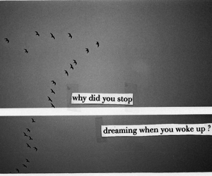 quote, Dream, and dreaming image