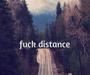 cat, distance, and pretty image