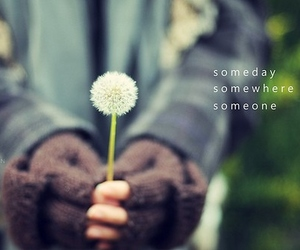 someday, someone, and somewhere image