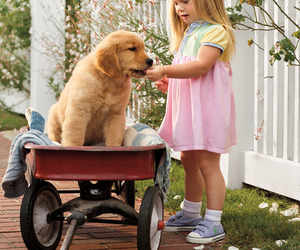 cute, dog, and child image