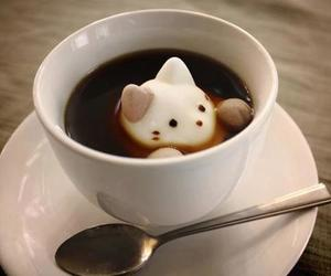 cat, coffee, and cool image
