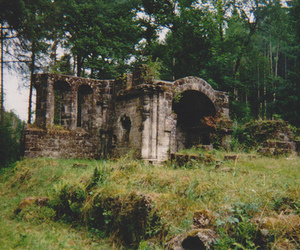 leaves and ruins image