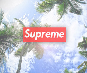 supreme, summer, and swag image