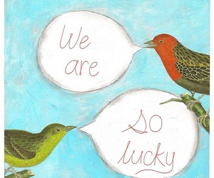 birds and lucky image
