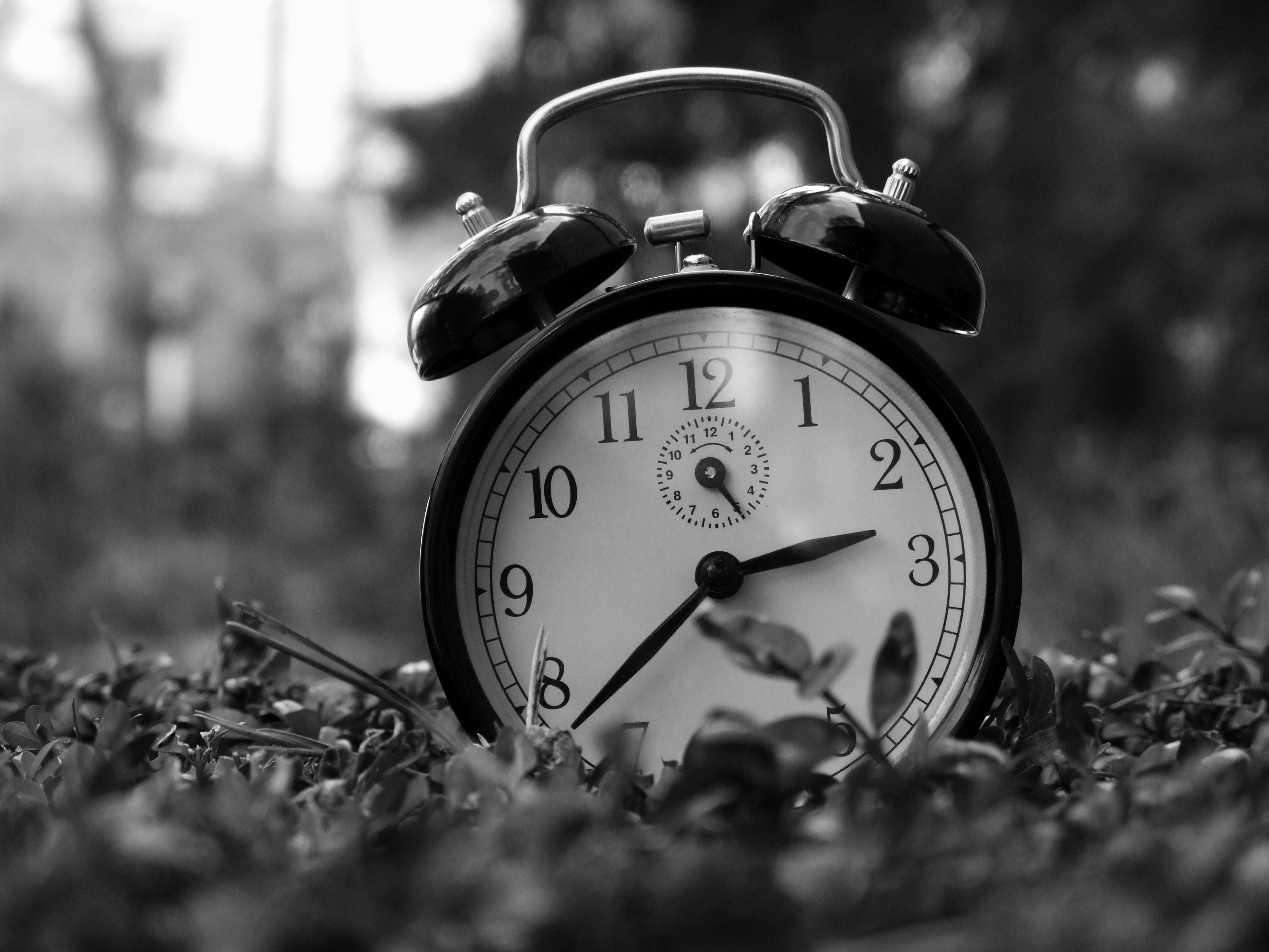 alarm clock, art, and black and white image
