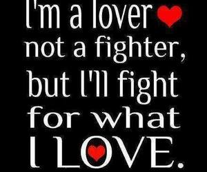 love, fight, and lover image