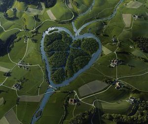 heart, nature, and green image