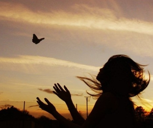 girl, butterfly, and sunset image