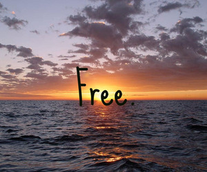 free, girl, and ocean image