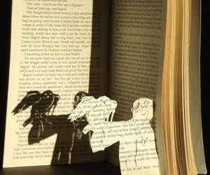 harry potter, book, and hedwig image