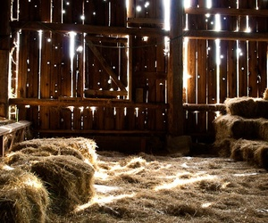 barn, country, and light image